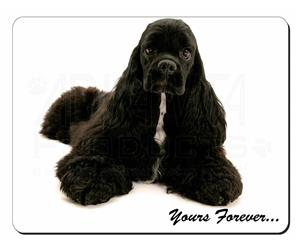 American Cocker Spaniel Sentiment, AD-ACS2
