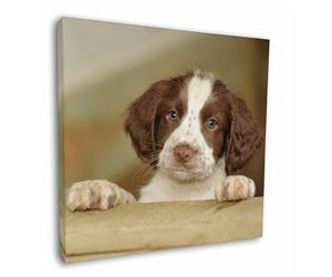 Springer Spaniel Puppy Dog, AD-SS76