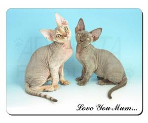 Devon Rex Cats Mum Sentiment, AC-20lym