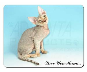 Devon Rex Kitten Mum Sentiment, AC-174lym
