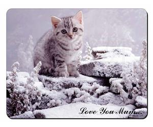 Silver Tabby Cat in Snow Mum Sentiment, AC-70lym