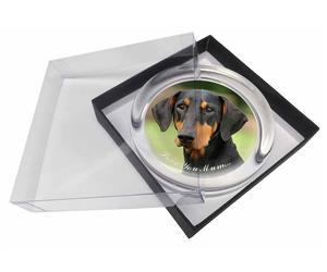 Click Image to See All 38 Different Products Available with this Doberman