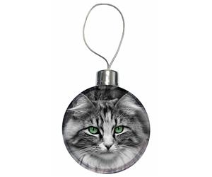 Click to see all products with this Silver Tabby cat.