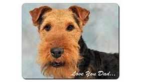Welsh Terrier Dog
