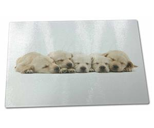 Five Golden Retriever Puppy Dogs, AD-GR4