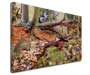 Click Image to See All Woodland Products in this Section