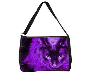 Black Cat in Pink Purple Night Lights