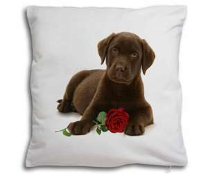 Chesapeake Bay Retriever with Rose, AD-CBR1R