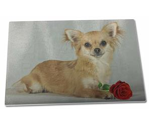 Chihuahua with Red Rose, AD-CH6R
