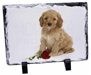 Cockerpoodle Puppy with Red Rose, AD-CP6R