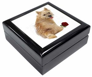 Cairn Terrier with Red Rose, AD-CT1R