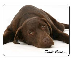 Welsh-Chocolate Labrador
