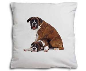 Boxer Dog with Puppy, AD-B44