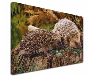 Mother and Baby Hedgehog, AHE-5