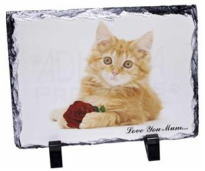 Ginger Cat with Rose