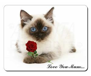 Ragdoll Cat with Rose