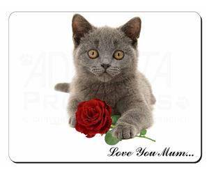 Blue Cat with Rose