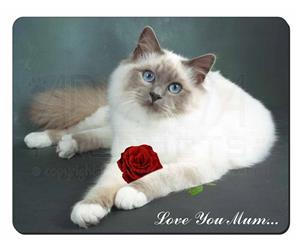 Birman Cat with Rose
