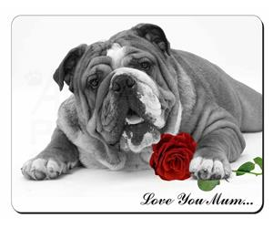 Bulldog (B+W) with Rose