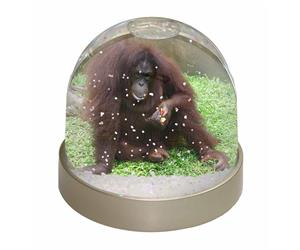 Click to see all products with this Orangutan.