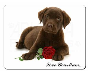 Puppy with Rose