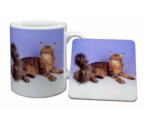 Click to see all products with this Tabby Maine Coon Cat.