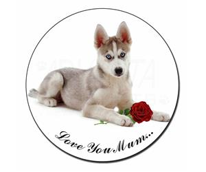 Husky with Red Rose