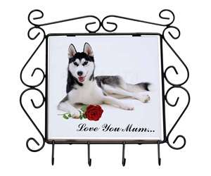 Husky with Rose