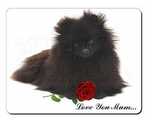 Pomeranian Dog with Rose