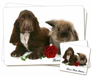Spaniel+Rabbit+Rose
