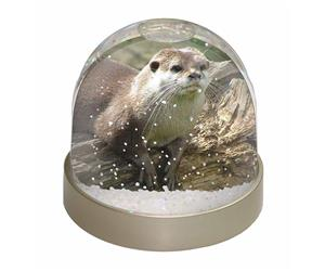 Click to see all products with this River Otter.