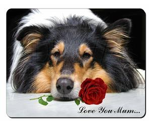 Rough Collie with Rose