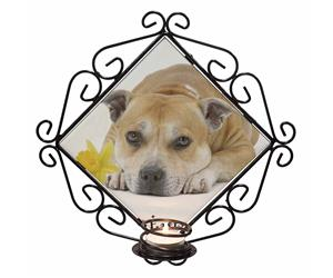 Personalised Red Staffie Dog AD-SBT3DA2