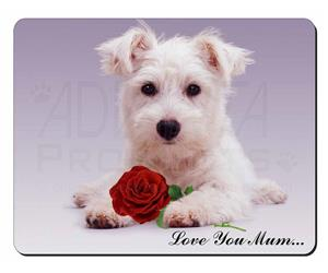 Westie with Rose