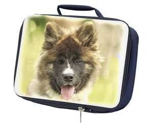 Beautiful Akita Dog, AD-A4