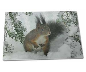 Click to see all products with this Forest Squirrel.
