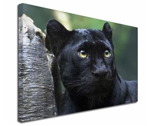 Click Image to See All 38 Different Products with this Black Panther Printed Onto