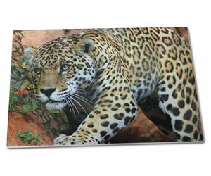Click Image to See All 38 Different Products with this Jaguar Printed Onto