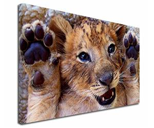 Click Image to See All 38 Different Products with this Playful Lion Cub Printed Onto