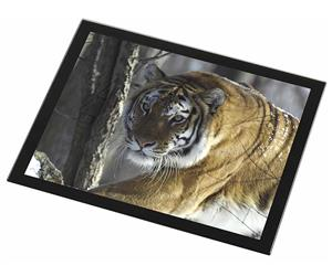 Click Image to See All 38 Different Products with this Bengal Tiger Printed Onto