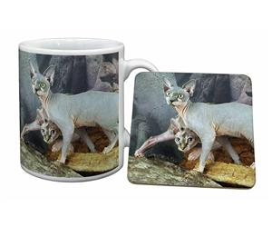 Click to see all products with this Sphynx cat.