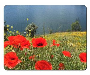 Red Poppies by Lake