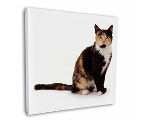 Click to see all products with this Tortoiseshell cat.