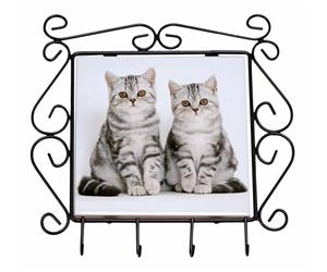 Click to see all products with these Silver Tabby cats.