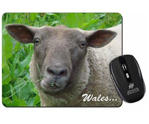 Welsh Sheep with Wales Wording