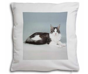 Click to see all products with this Silver Maine Coon Cat.