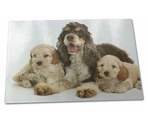 Click Image to See the Different Cockerpoo Dogs & All the Different Products Available