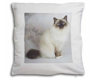 Birman Cat, AC-50