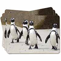 Penguins on Sandy Beach Picture Placemats in Gift Box