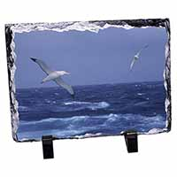 Sea Albatross Flying Free Photo Slate Christmas Gift Idea